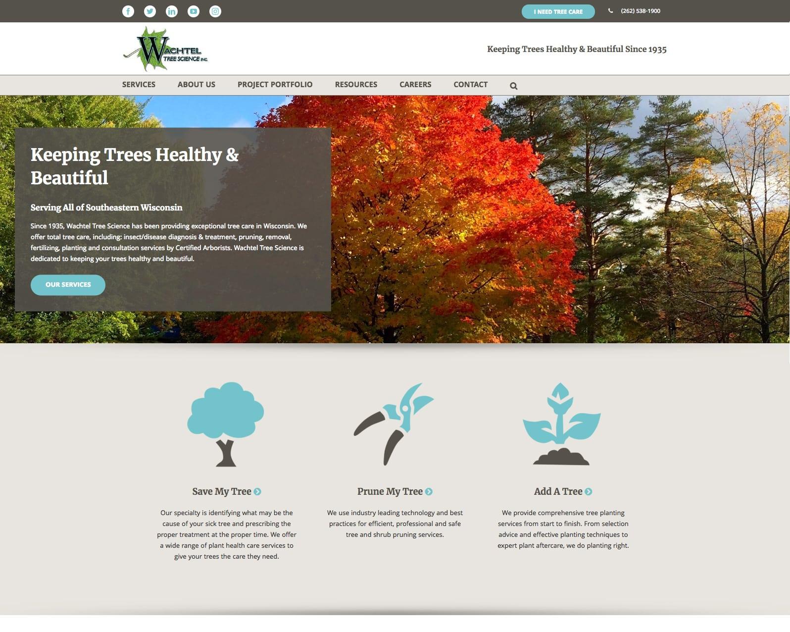 Wachtel website homepage