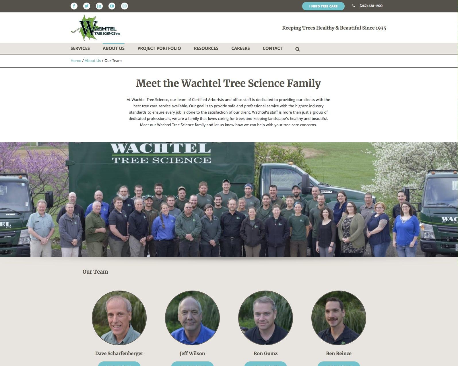 Wachtel about us webpage