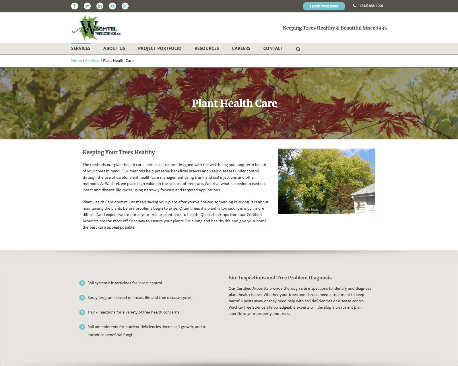 Wachtel service detail webpage