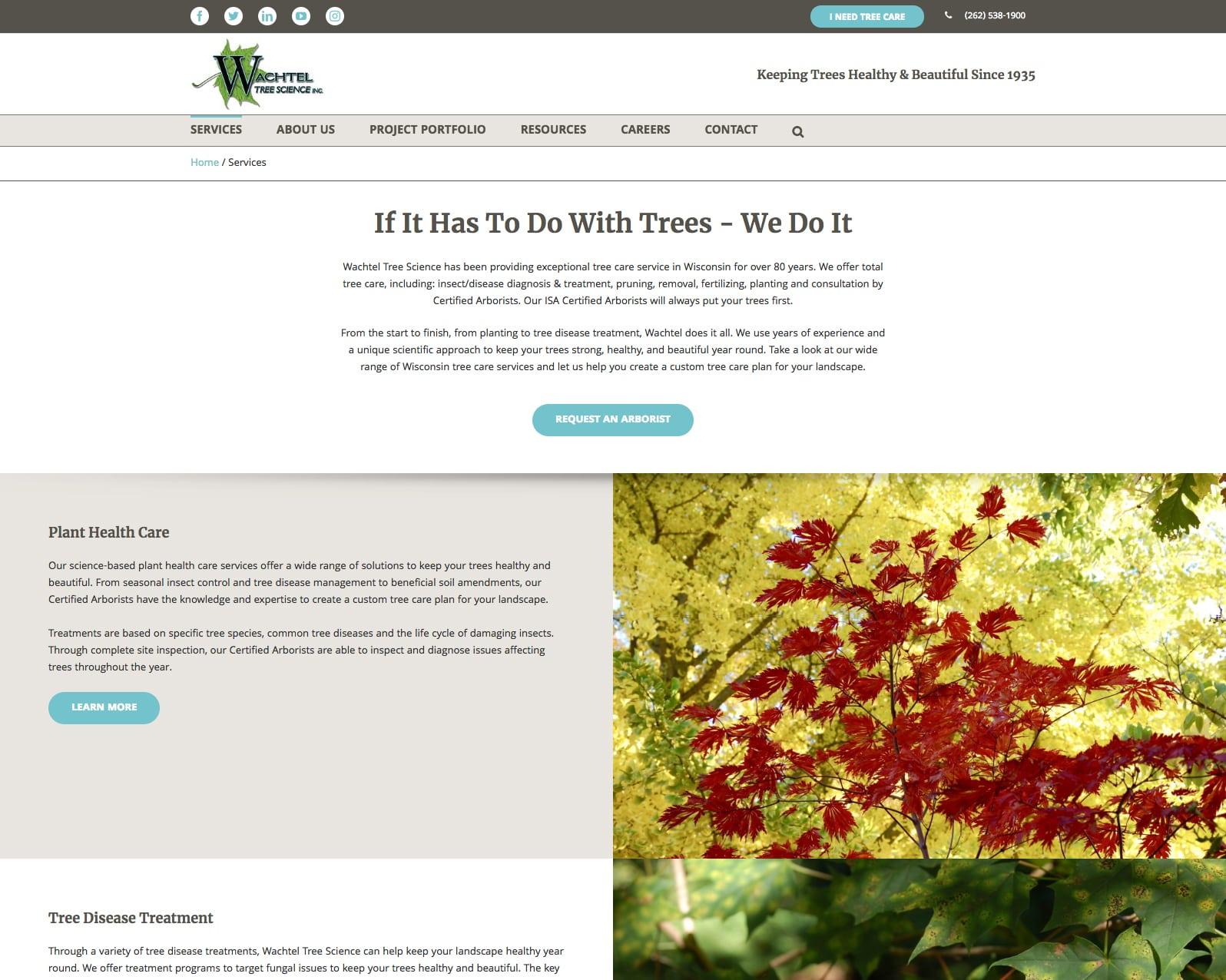 Wachtel service listing webpage