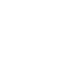 Rapid Prep white logo